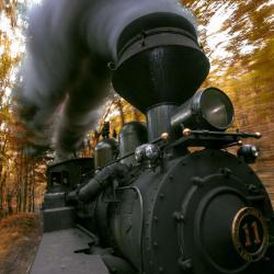 Cass Scenic Railroad Wild Ride
