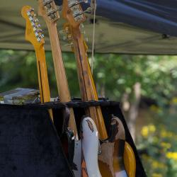 Guitars New River Blues Festival