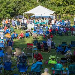 Large Crowd of Concert people at New River Blues Festival