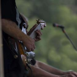 Guitarist Tony Fazio