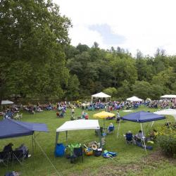 New River Blues Festival 2014