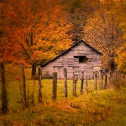 Old Barn in Bolar VA