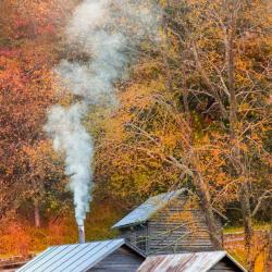 Cabin in Highland County VA
