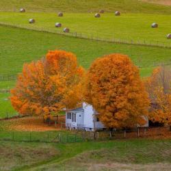 Farm in Highland County VA