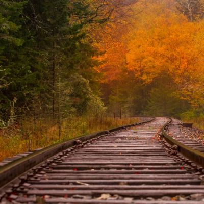 The railroad tracks at Shavers Fork WV