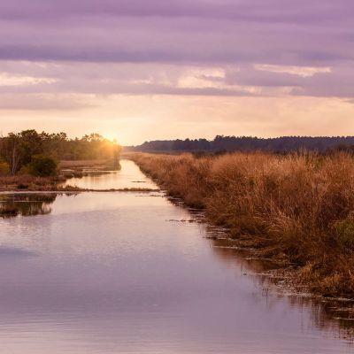 Pungo Lake Canal at Sunset