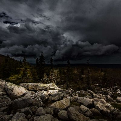 Dolly Sods - The Alter