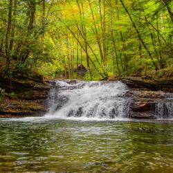 Kumbrabow State Park Mill Creek Falls WV