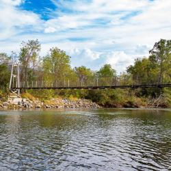 Wallace Tract Swinging Bridge Cowpasture River