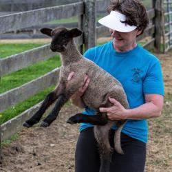 Terry Duff Fair Lawn Farm Lamb
