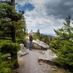 Spruce Knob Tower Trail, Riverton, WV