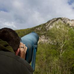 Looking at Seneca Rocks WV