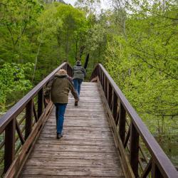 Bridge over North Fork South Branch Potomac River at Seneca Rocks WV
