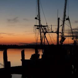 Darien Shrimp Boats