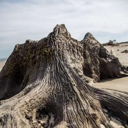 Jeklly Island Beach