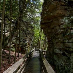 Beartown State Park WV