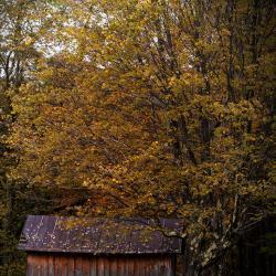 Wilson House Barn Monterey Virginia