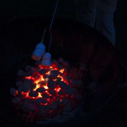 Steven roasting marshmallows