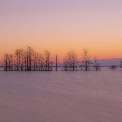 Lake Mattamuskeet at Dawn