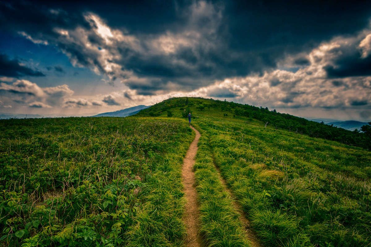 Roan Mountain-Fathers Day Hiking