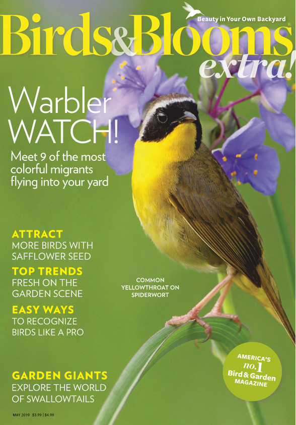 Published in Birds & Blooms Extra